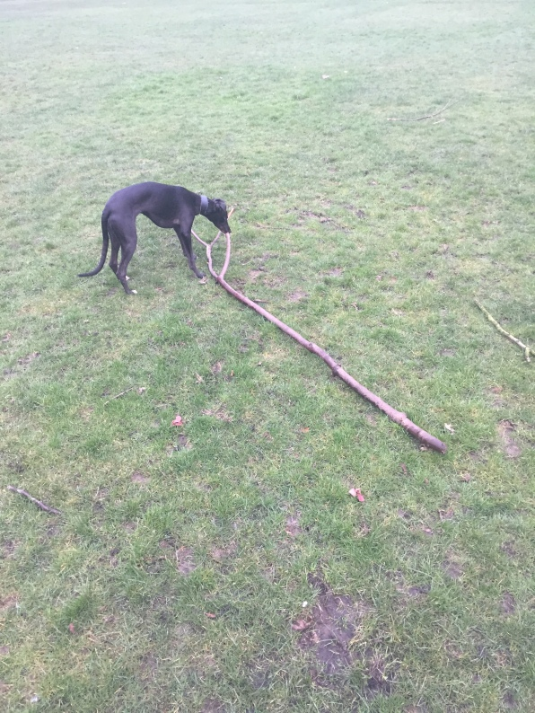 Two sticks! Heaven!